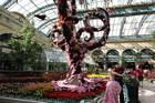 Bröllop Bellagio Las Vegas